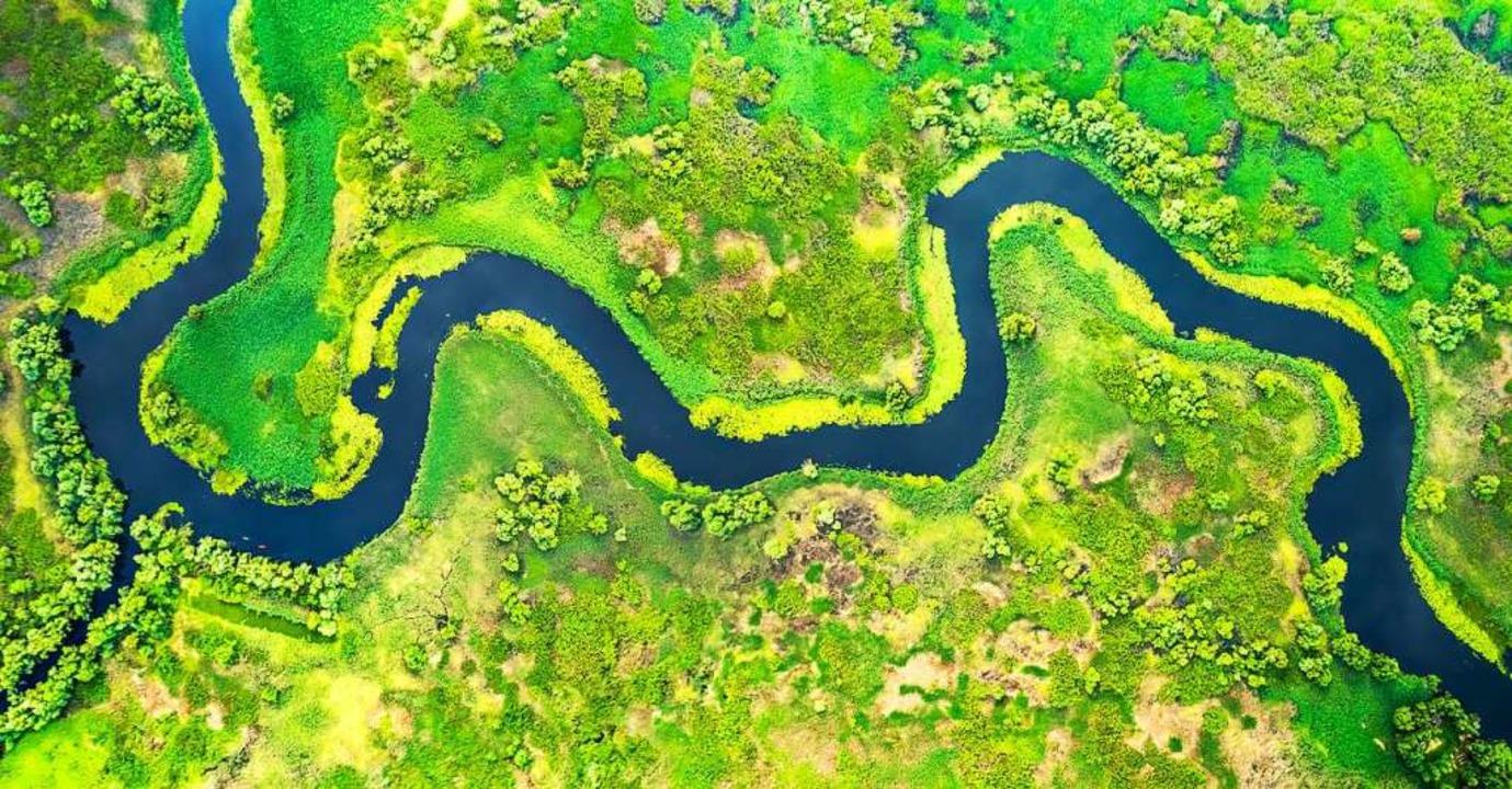 In Deutschland ein seltener Anblick: E... ein Bild vom Donaudelta in Rumänien.     Foto: foto8tik  (stock.adobe.com)