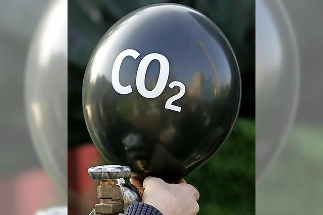 Grüne: Keine Kürzung beim Klimaschutz