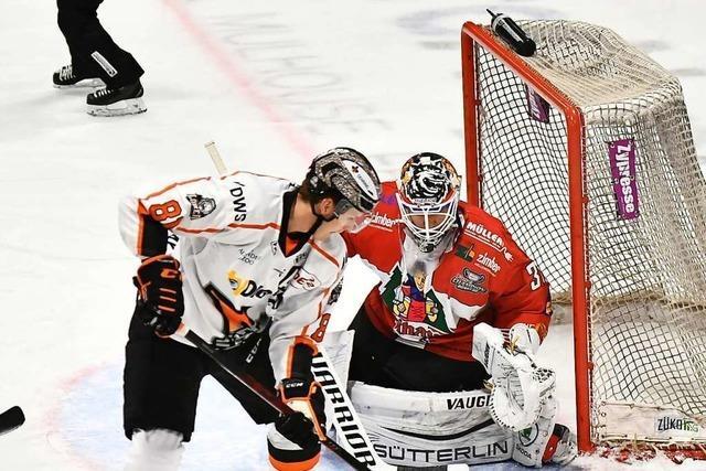 Analyse: Die Freiburger Wölfe spielen trotz Niederlagen und Verletzungen eine starke Saison