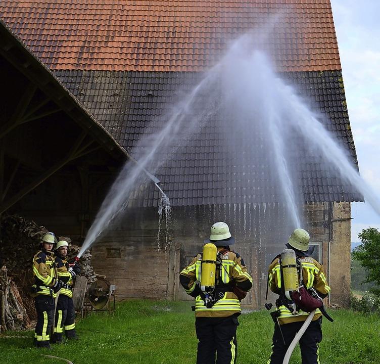 Der Giesinhof am Ortsrand von Sexau st...s 2014 Übungsobjekt der Feuerwehr war.  | Foto: Hans-E. Meidhof