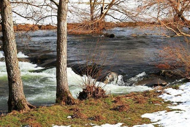 Schneeschmelze lässt Wasserstand der Wiese bei Schopfheim steigen