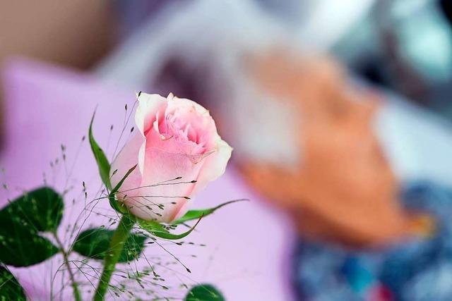 Warum Trauern Zeit braucht und jede Emotion dabei erlaubt ist