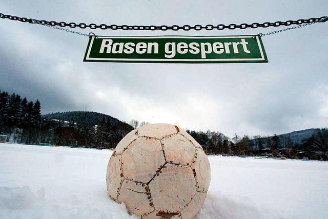 Das Spiel des SC Freiburg II in Homburg fällt erneut aus