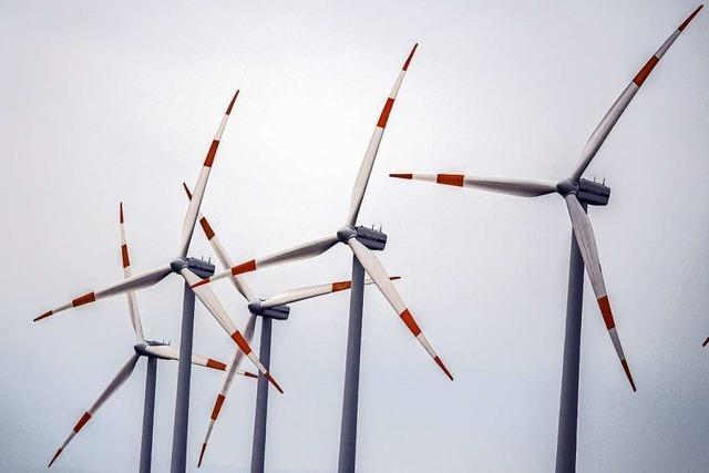 Windräder werden immer größer und stärker - das passt nicht allen