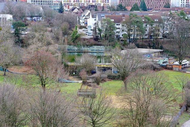 Das Außenbecken des Freiburger Westbads liegt auf Eis
