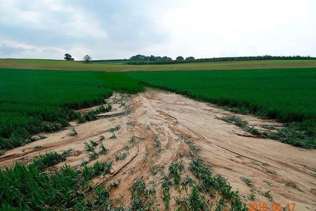 Wie sich das Markgräflerland besser vor Überflutungen und Erosion schützen kann