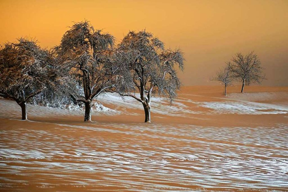 Martin Dietsche schickte uns  ein weiteres Schneefoto von Adelhausen mit Blick Richtung Maulburg. Mit den Scheinwerfern vorbeifahrender Autos wurde das schneebedeckte Feld und die Bäume nahezu perfekt und spannend angestrahlt. (Foto: Martin Dietsche)