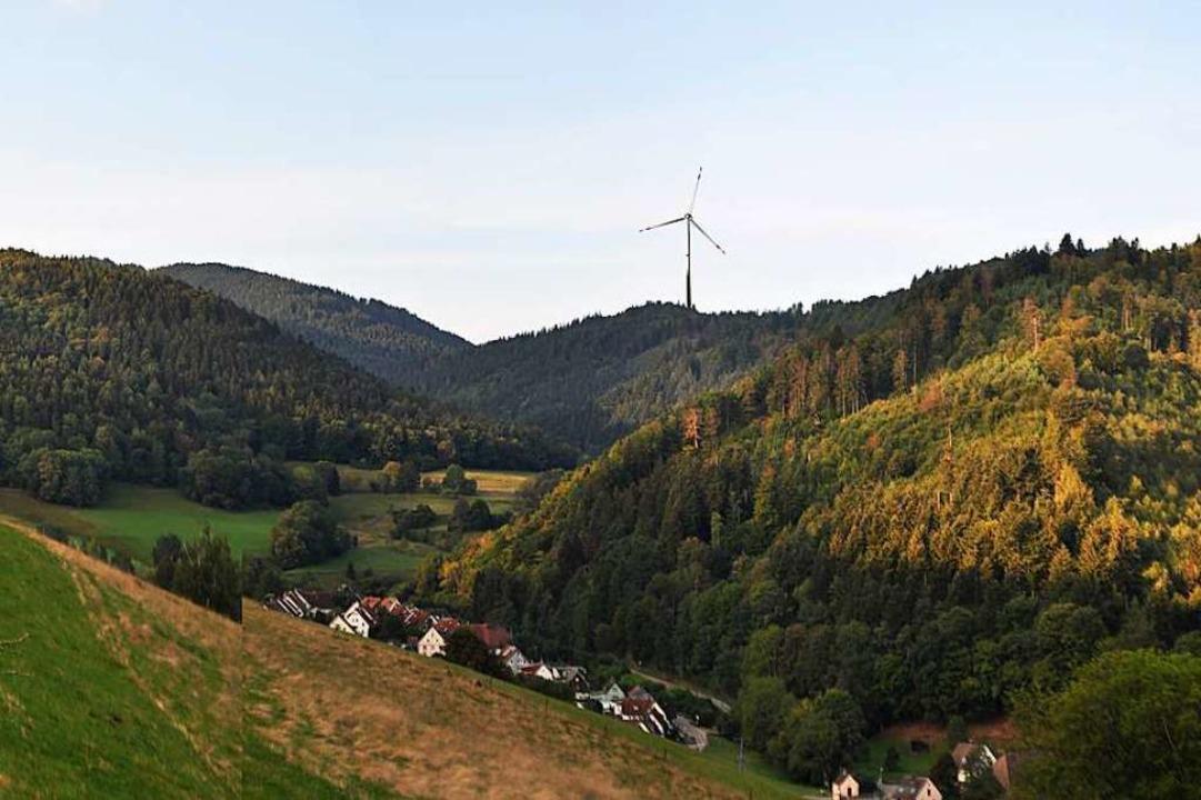 Diese Simulation zeigt laut Ökostrom F... nicht zu sehen, so Ökostrom Freiburg.  | Foto: Ökostrom Consulting