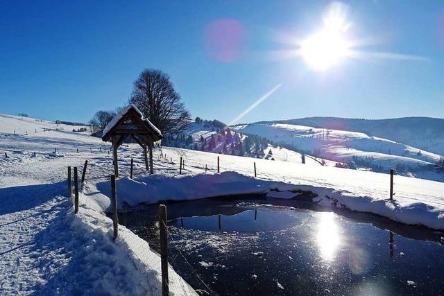 Auf dem Schauinsland geht das Winterwunder weiter