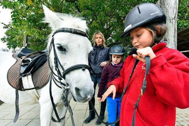 Beim Pferdesportverein Eichenbrunnen kommen Kinder in Kontakt mit Pferden