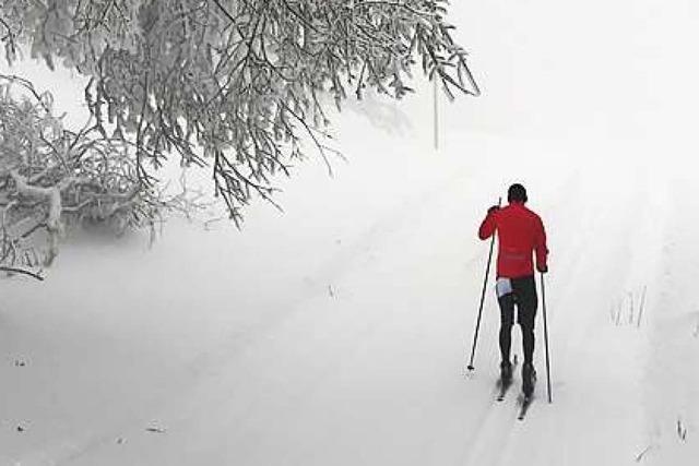 Trotz Tauwetter und Regen: Loipen im Schwarzwald haben noch Schnee