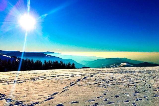 Pittoreske Winterlandschaft auf dem Schauinsland