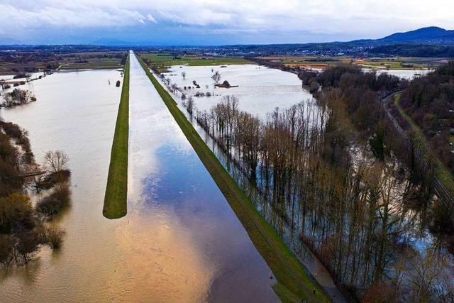 Regen und Tauwetter lockt Spaziergänger an die Flüsse im Breisgau