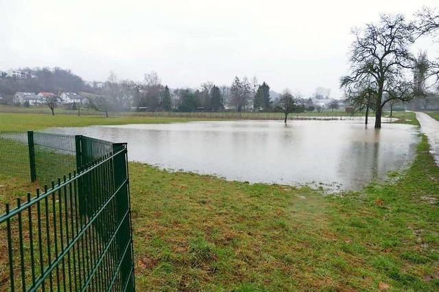 Nach dem starken Regen bilden sich in Rheinfelden Seen auf Wiesen