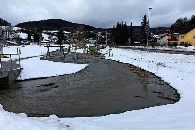 Schneeschmelze lässt Bach anschwellen