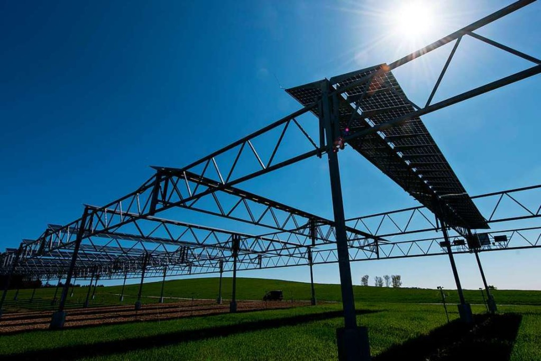 Solarmodule über einem Feld. Die Modul...ld darunter noch bestellt werden kann.  | Foto: Patrick Seeger