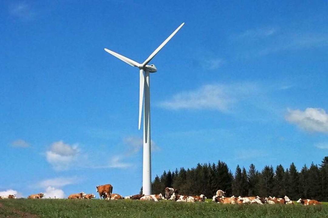 Baden-Württemberg muss die Windkraft, ...bauen, schon der Netzstabilität wegen.  | Foto: Markus Donner