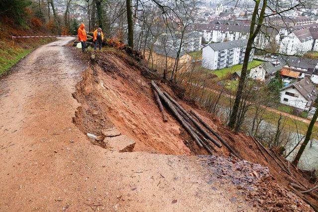 Am Entegast in Schopfheim gehen mehrere Erdrutsche ab