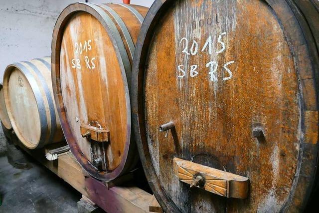 Wie geht es den Weinbaubetrieben im Kreis Lörrach?