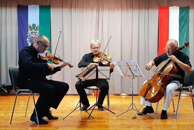 Offenburger Streichtrio spielt rare ungarische Musik: Auf die richtige