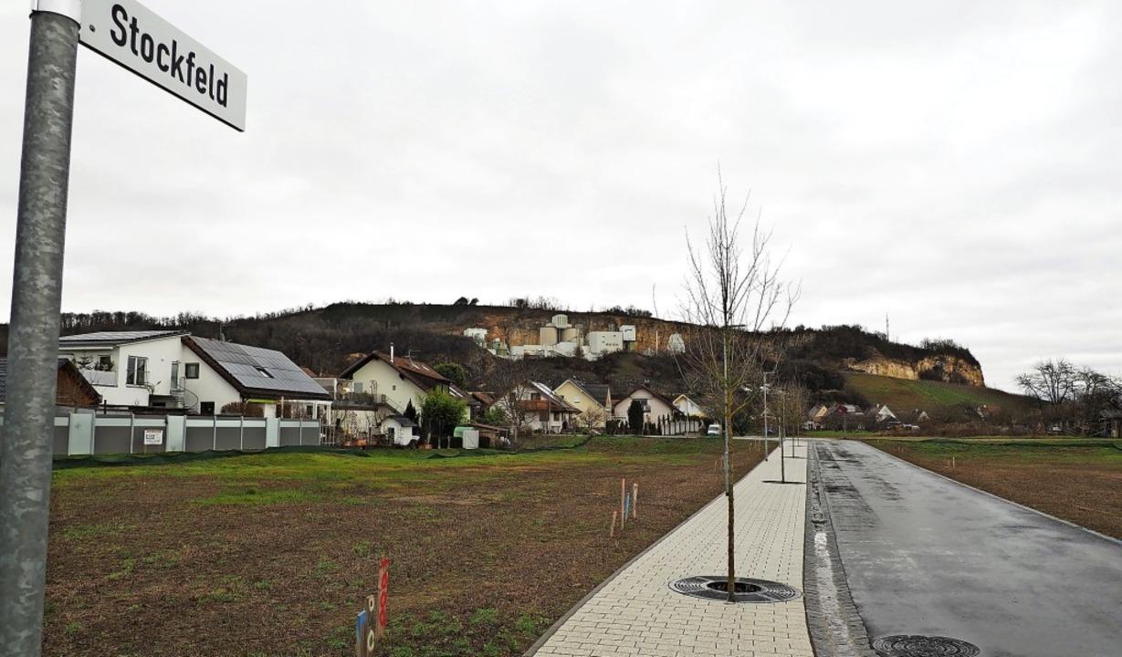 Rechts und links der neuen Erschließun...nd insgesamt neun Bauplätze zu haben.     Foto: Herbert Frey