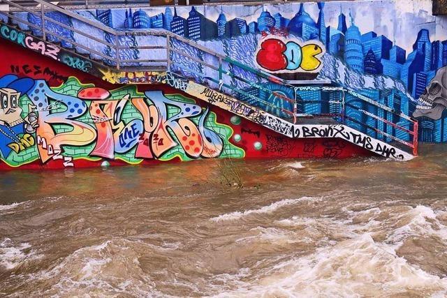 Hochwasser am Uferweg an der Dreisam