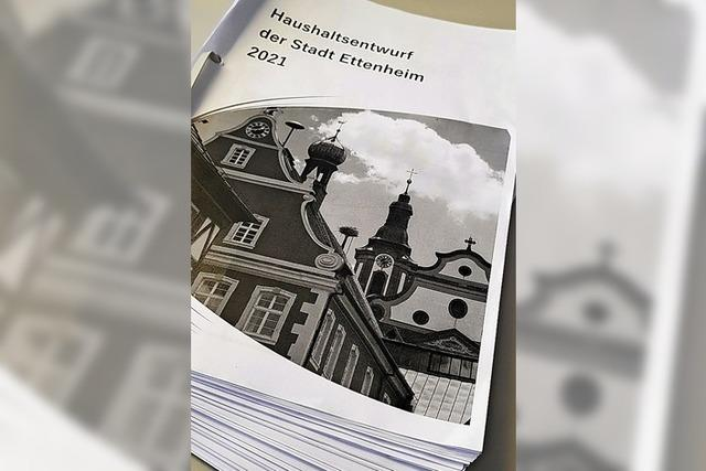 HINTERGRUND: Haushaltsberatung