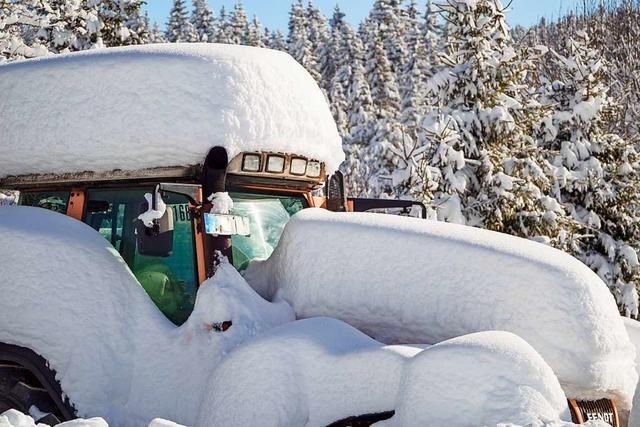 Der Januar brachte dem Hochschwarzwald Schnee wie in den Achtzigern