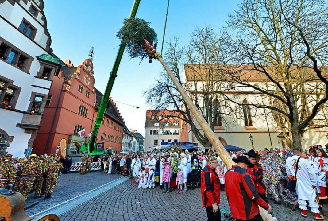 Mit dem Narrenbaumstellen auf dem Rath...die heiße Phase der Freiburger Fasnet.  | Foto: Michael Bamberger