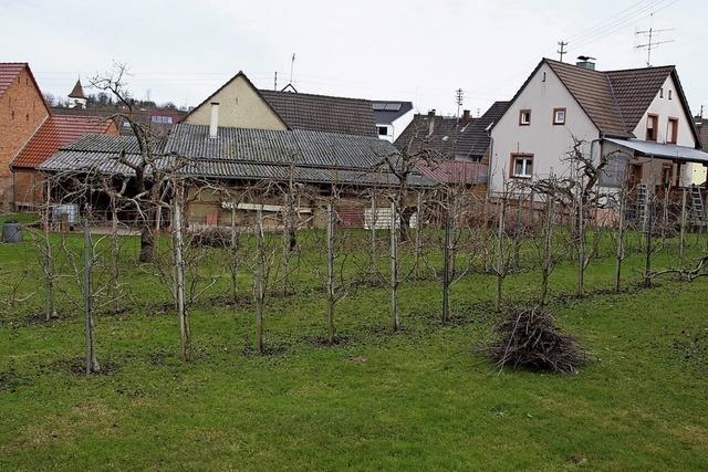 Wohnhäuser in Kittelgasse