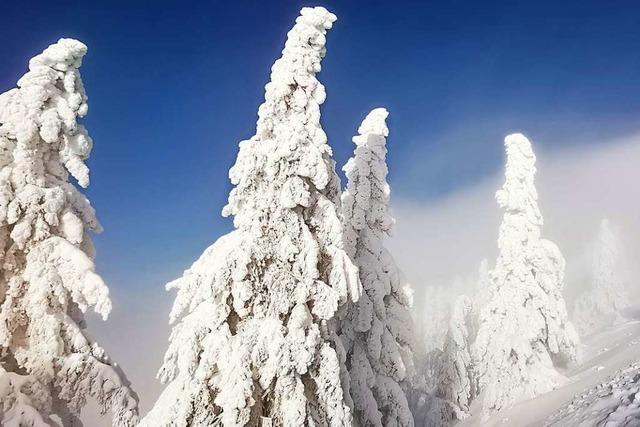 Feldbergranger erklärt, welche Gefahren am winterlichen Feldberg lauern