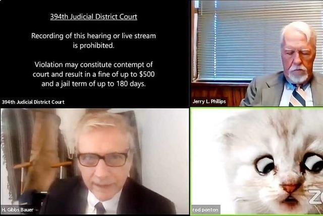 Mit Katzenfilter vor Gericht: Video von Anhörung macht Furore