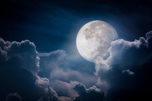 Im Takt des Mondes