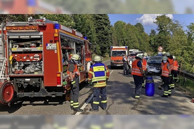 Laufenburger Feuerwehr hilft an 98 Einsatzstellen