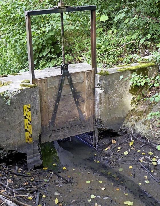 Auch Bötzingen spürt den Klimawandel: ...e  Neugraben am Erlenschachen im Juli.    Foto: Manfred Frietsch
