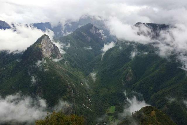 Von Bären und Partisanen: Der Sutjeska-Nationalpark steckt voller Geschichte(n)