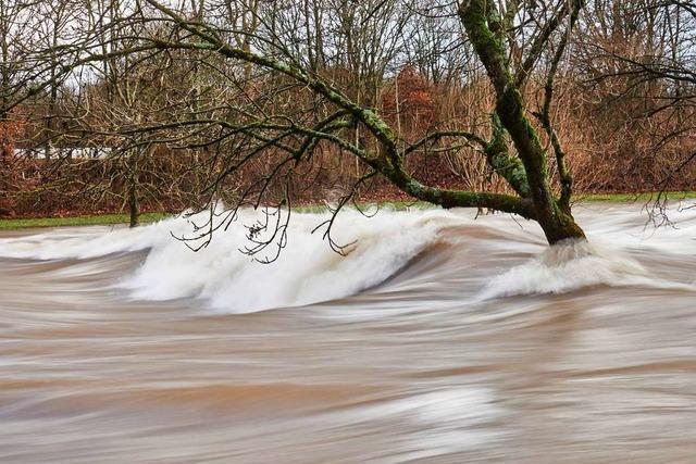 Was können wir von der Natur beim Hochwasserschutz lernen?
