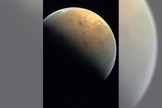 Alle wollen zum Mars