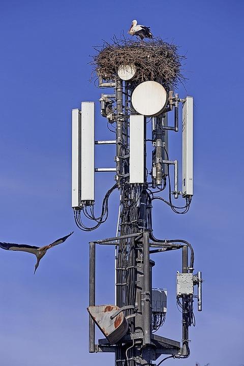 So kann gemeinsame Nutzung eines Mobilfunkmastes auch aussehen.    Foto: Uwe (stock.adobe.com)