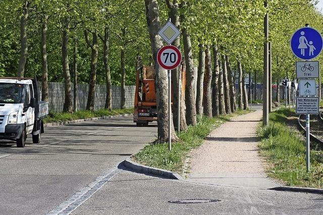 Ortschaftsrat Haltingen gibt grünes Licht für Radweg-Ausbau