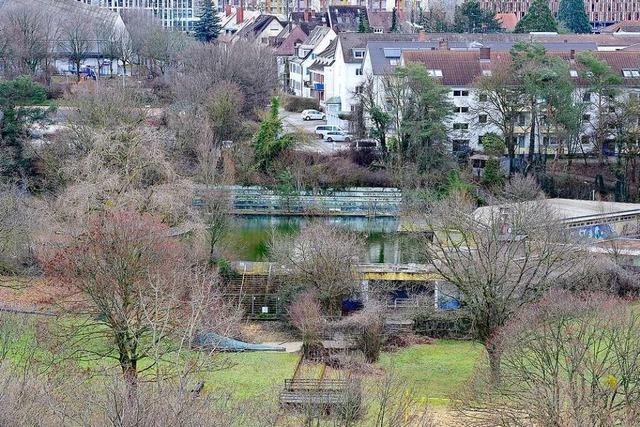 Freiburg Lebenswert will Ökologie fördern und Baugebiete streichen