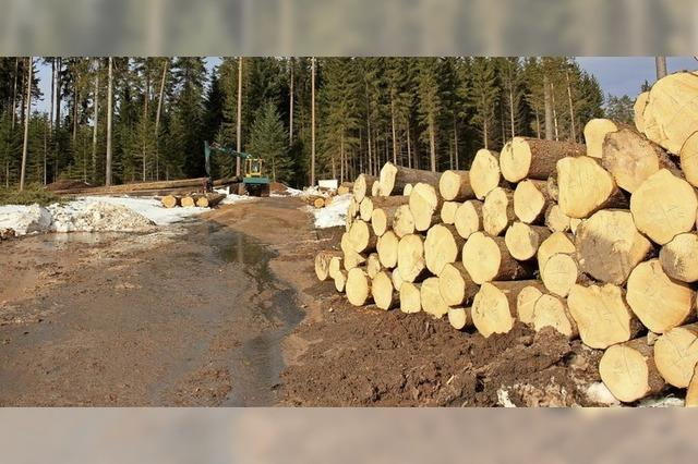 Betriebe statt Bäume