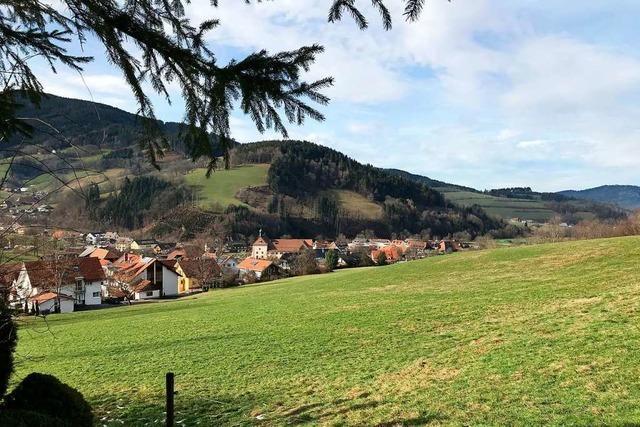 Das geplante Neubaugebiet in Oberried soll möglichst günstig und autofrei sein
