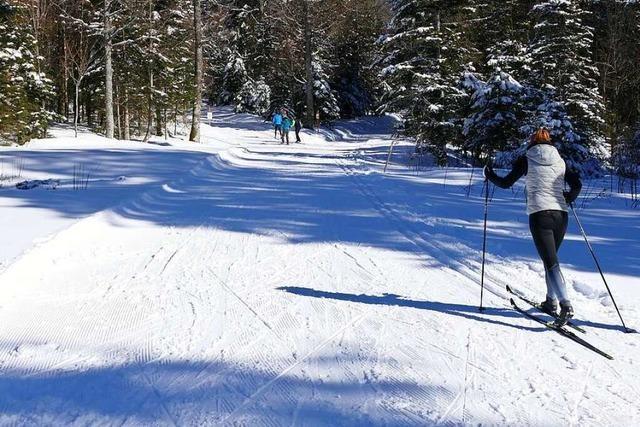 Wintersport-Boom erfordert viel Einsatz von der Langlaufgilde Hohtann-Belchen