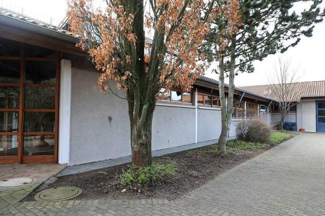 Bäume an der Lindenfeldhalle in Dundenheim müssen weg