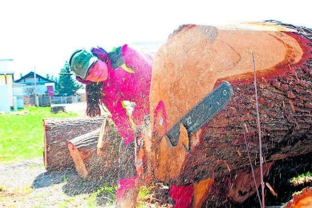 Wird die Baumfällfreiheit in Schopfheim beschnitten?