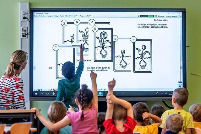 Grüne: Stadt soll IT-Administrator für die Weiler Schulen stellen
