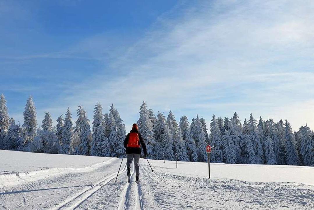 Leere Loipen: Besonders unter der Woch...en des Schwarzwalds eine Runde drehen.  | Foto: Anita Fertl