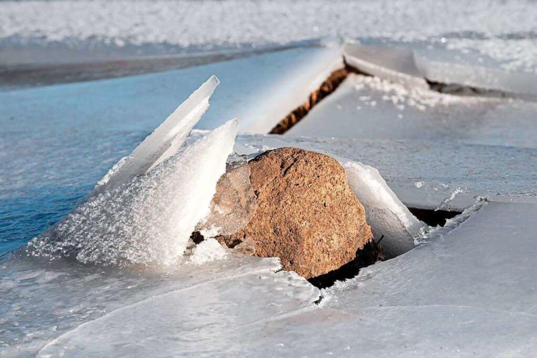Wie Pflanzen im Garten scheinen die Steine am Schluchsee aus dem Eis zu brechen  | Foto: Wolfgang Scheu