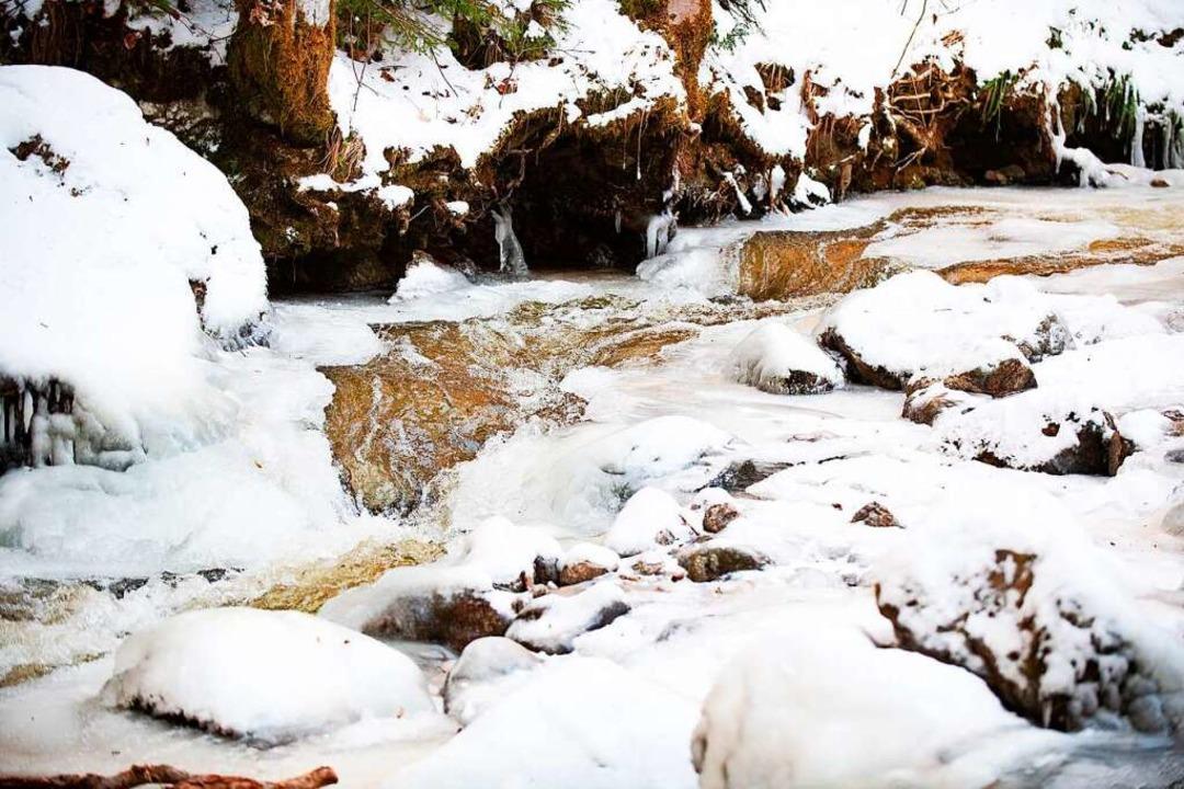 In der Ravennaschlucht formen Eis und strömendes Wasser skurille Formen  | Foto: Wolfgang Scheu